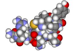 Генетические и гормональные сбои