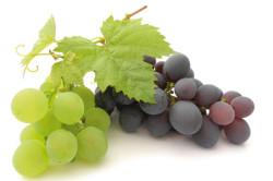 Виноград для нормализации обмена веществ
