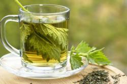 Прием чая с крапивой при частых месячных
