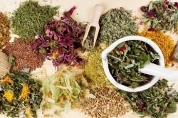 Лечение уреаплазмы травяными сборами