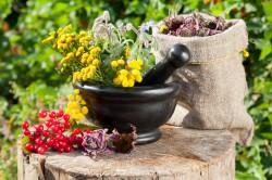 Лечебные травы для восстановления гормонального фона